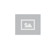 Межкомнатная дверь DEFORM D D11 DEFORM ДО